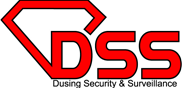 Logo, Dusing Security & Surveillance, Security Services in Roseville, MI